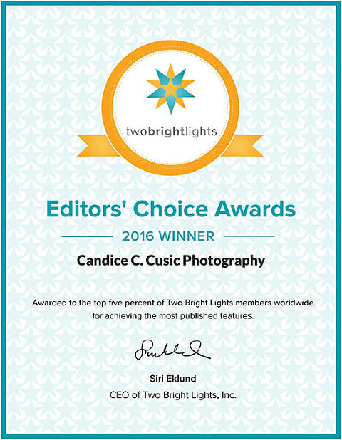 Chicago wedding photographer Candice C. Cusic