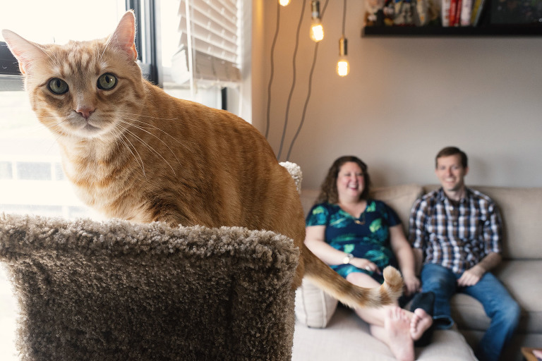 Lakeview Chicago engagement shoot with house cat by Candice Cusic Photography